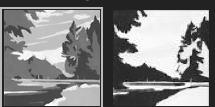 Landscape Notan
